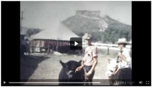 A boy stands with a black cow under the Castle Rock butte.